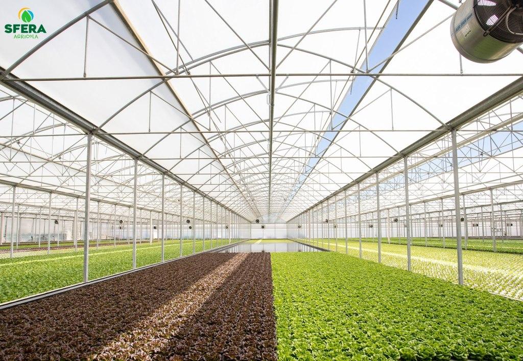 agricoltura idroponica economia circolare sfera agricola